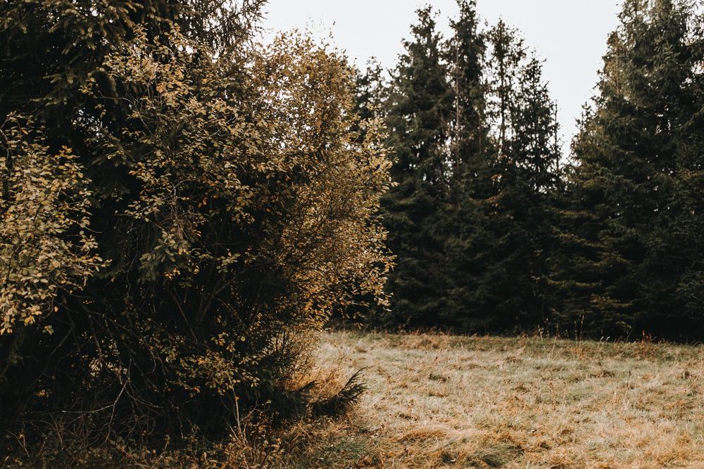 sesja_w_gorach_fotografia_slubna_malopolska